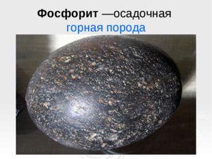 Фосфорит—осадочная горная порода