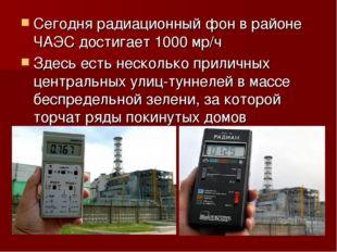 Сегодня радиационный фон в районе ЧАЭС достигает 1000 мр/ч Здесь есть несколь