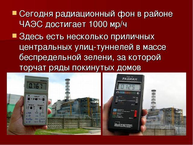 Сегодня радиационный фон в районе ЧАЭС достигает 1000 мр/ч Здесь есть несколь...