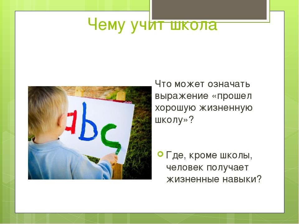Чему учит школа Что может означать выражение «прошел хорошую жизненную школу»...