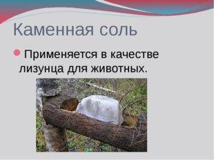 Каменная соль Применяется в качестве лизунца для животных.
