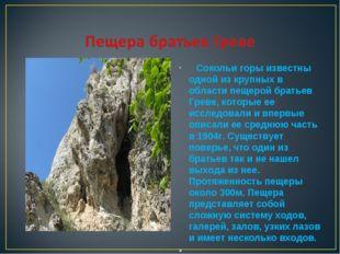 Сокольи горы известны одной из крупных в области пещерой братьев Греве, кото