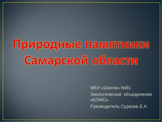 МБУ «Школа» №91 Экологическое объединение «БЭМС» Руководитель Суркова Е.А.