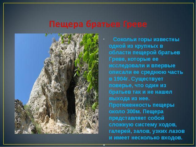 Сокольи горы известны одной из крупных в области пещерой братьев Греве, кото...