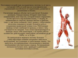 Постоянное воздействие на мышечную систему (а её масса составляет 44% от всей