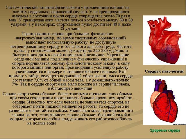 Систематические занятия физическими упражнениями влияют на частоту сердечных...
