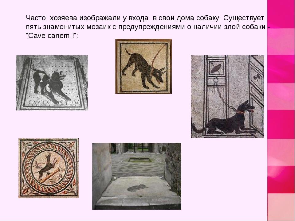 Часто хозяева изображали у входа в свои дома собаку. Существует пять знаменит...