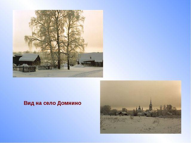Вид на село Домнино