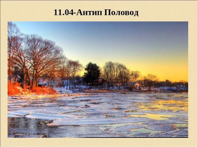 11.04-Антип Половод
