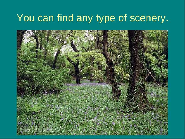 You can find any type of scenery.
