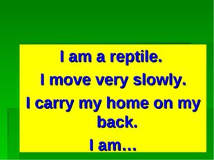 I am a reptile. I move very slowly. I carry my home on my back. I am…