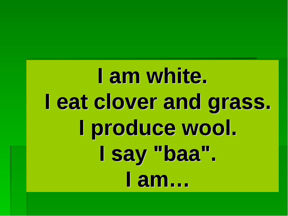 """I am white. I eat clover and grass. I produce wool. I say """"baa"""". I am…"""