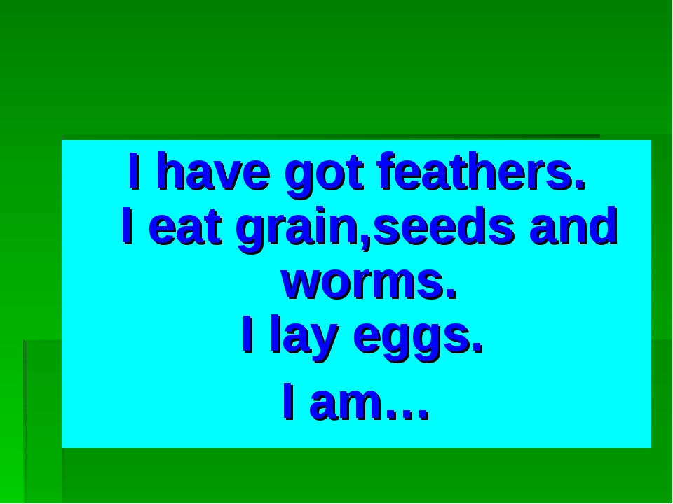 I have got feathers. I eat grain,seeds and worms. I lay eggs. I am…