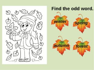 Find the odd word. winter spring autumn forest