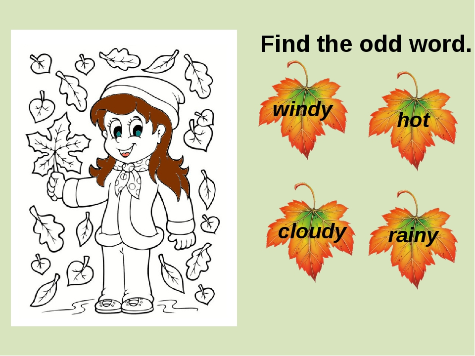 Find the odd word. windy rainy cloudy hot