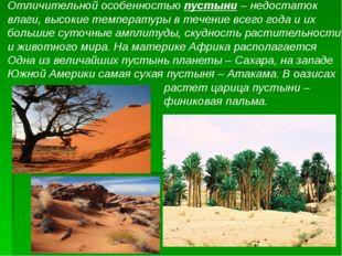 Отличительной особенностью пустыни – недостаток влаги, высокие температуры в