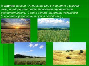 В степях жаркое. Относительно сухое лето и суровая зима, плодородные почвы и