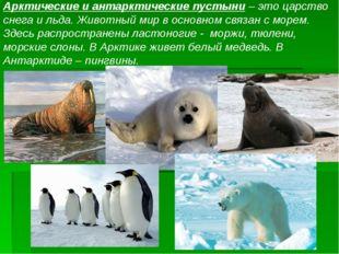 Арктические и антарктические пустыни – это царство снега и льда. Животный мир