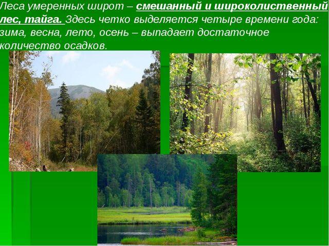 Леса умеренных широт – смешанный и широколиственный лес, тайга. Здесь четко в...