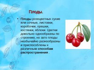Плоды розоцветных сухие или сочные, листовки, коробочки, орешки, костянки, яб