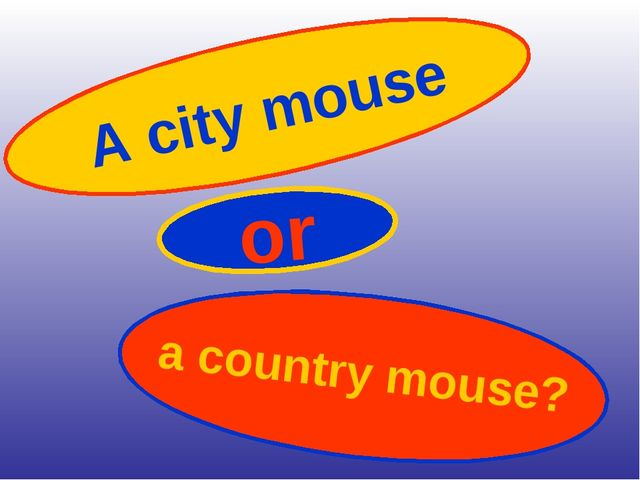 A city mouse or a country mouse?
