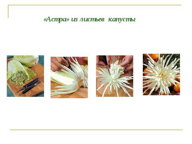 «Астра» из листьев капусты