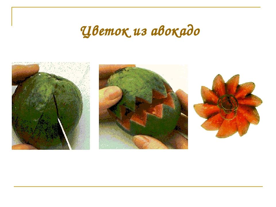 Цветок из авокадо