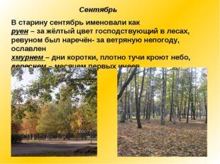 Сентябрь В старину сентябрь именовали как руен – за жёлтый цвет господствующи