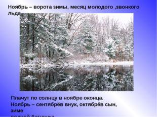 Ноябрь – ворота зимы, месяц молодого ,звонкого льда. Плачут по солнцу в ноябр