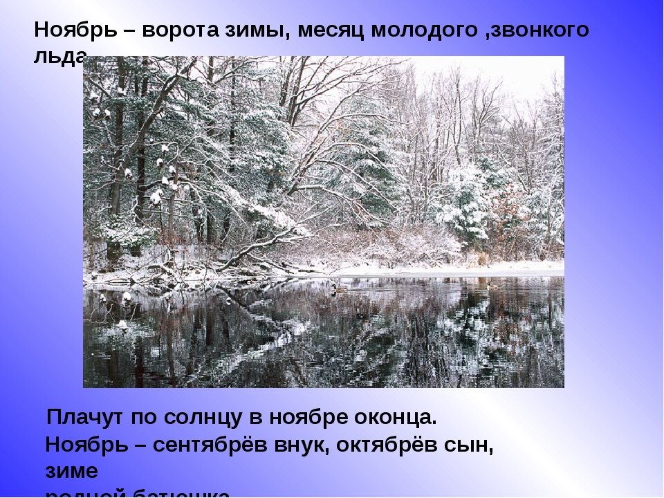 Ноябрь – ворота зимы, месяц молодого ,звонкого льда. Плачут по солнцу в ноябр...