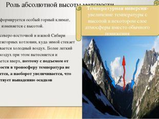Роль абсолютной высоты метсности. В горах формируется особый горный климат,