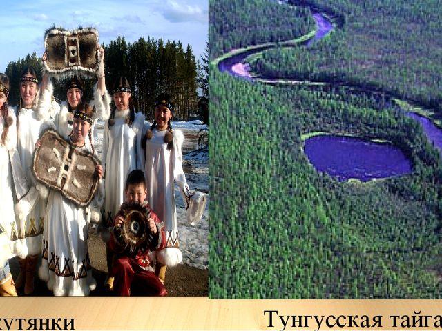 Тунгусская тайга Якутянки