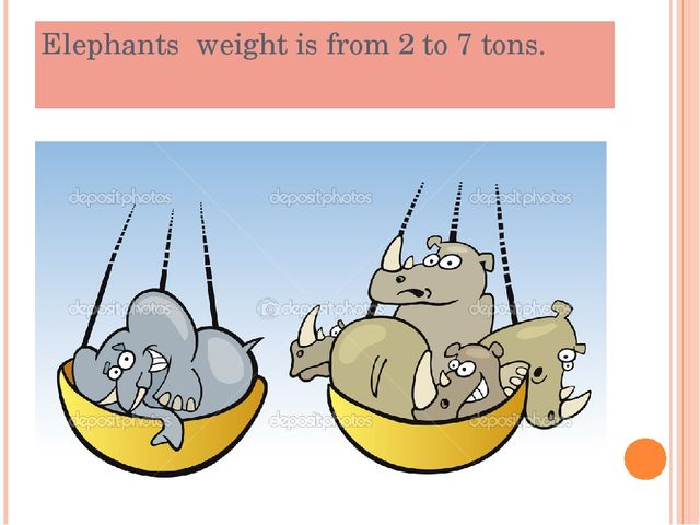 Elephants weight is from 2 to 7 tons.