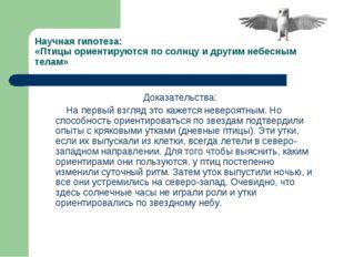 Научная гипотеза: «Птицы ориентируются по солнцу и другим небесным телам» Док