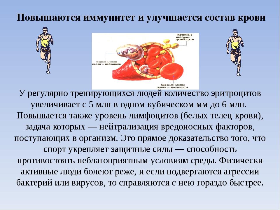 Повышаются иммунитет и улучшается состав крови У регулярно тренирующихся люде...