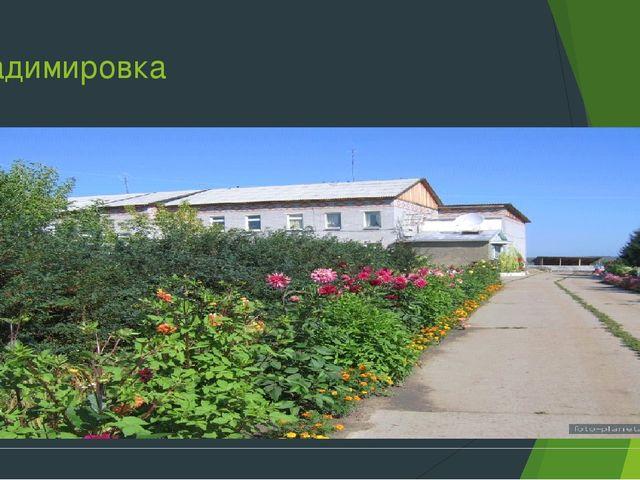 Владимировка