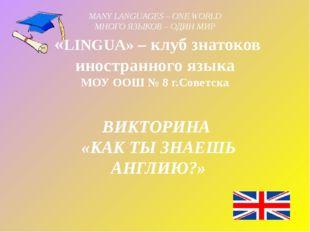 MANY LANGUAGES – ONE WORLD МНОГО ЯЗЫКОВ – ОДИН МИР  «LINGUA» – клуб знатоков