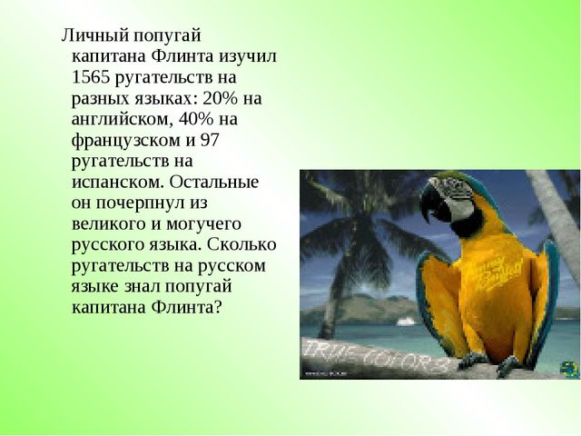 Личный попугай капитана Флинта изучил 1565 ругательств на разных языках: 20%...