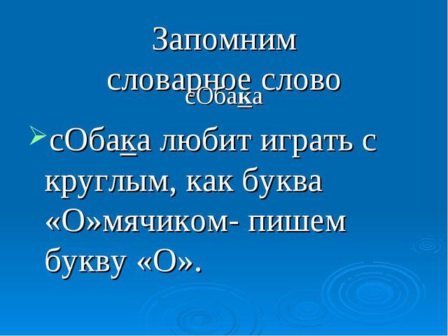 Запомним словарное слово сОбака сОбака любит играть с круглым, как буква «О»м...