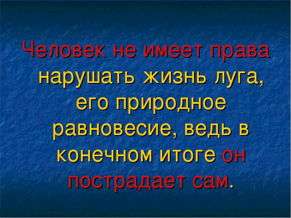 Человек не имеет права нарушать жизнь луга, его природное равновесие, ведь в...