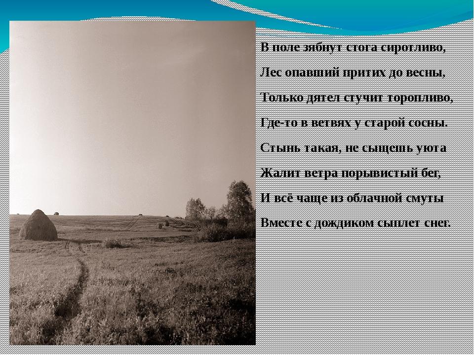 В поле зябнут стога сиротливо, Лес опавший притих до весны, Только дятел стуч...