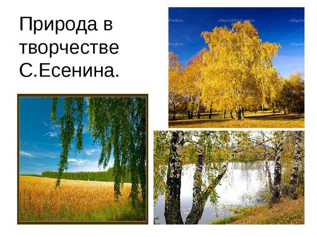 Природа в творчестве С.Есенина.