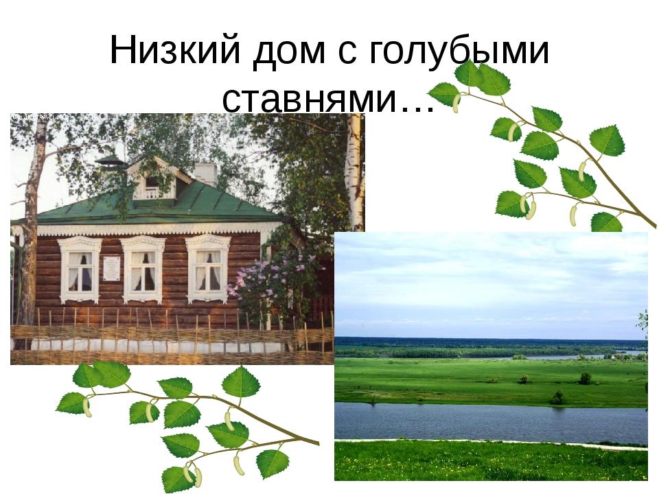 Низкий дом с голубыми ставнями…