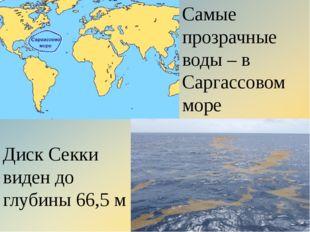 Самые прозрачные воды – в Саргассовом море Диск Секки виден до глубины 66,5м