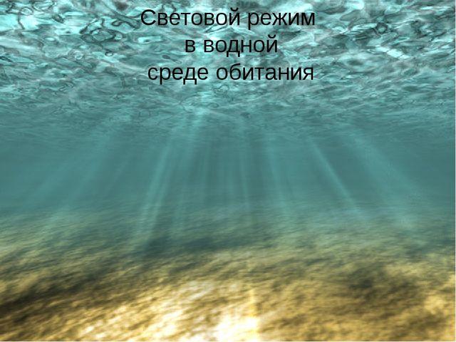 Световой режим в водной среде обитания