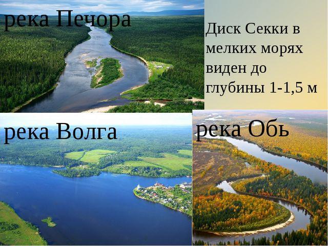 река Печора река Обь река Волга Диск Секки в мелких морях виден до глубины 1-...