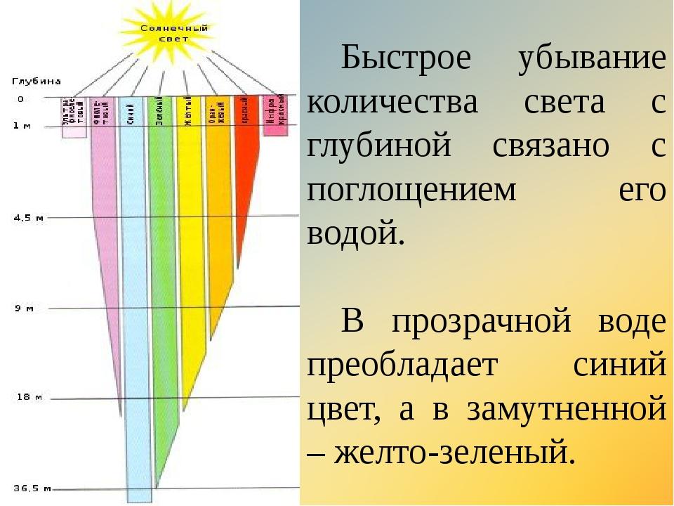 Быстрое убывание количества света с глубиной связано с поглощением его водой...