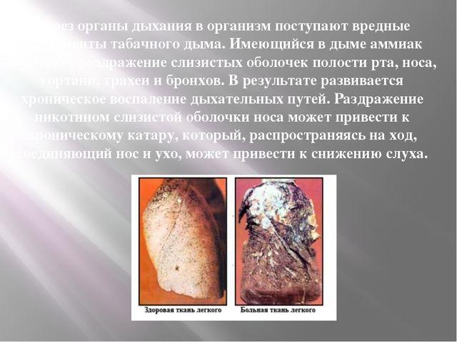 Через органы дыхания в организм поступают вредные компоненты табачного дыма....