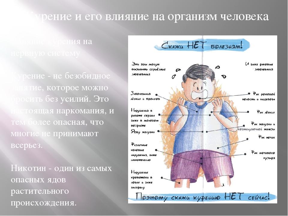 Курение и его влияние на организм человека Влияние курения на нервную систем...
