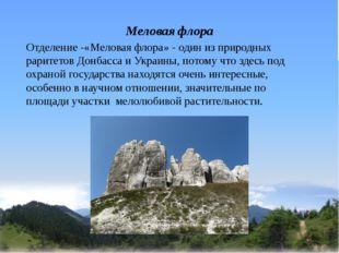 Меловая флора Отделение -«Меловая флора» - один из природных раритетов Донбас